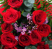 Bouquet des roses rouges Image stock