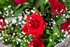 Bouquet des roses rouges Photographie stock libre de droits