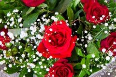 Bouquet des roses rouges Photographie stock libre de droits