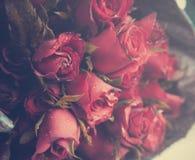 Bouquet des roses rouges Photo libre de droits