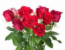Bouquet des roses rouges d'isolement sur le fond blanc images stock