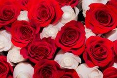 Bouquet des roses rouges et blanches, le concept de roman ou mariage image stock