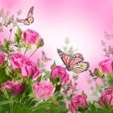 Bouquet des roses sensibles Images stock