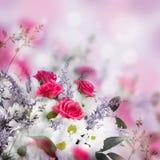 Bouquet des roses sensibles Photos stock