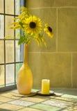 Bouquet des summerflowers devant un vent sunlit Photo stock
