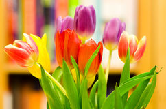 Bouquet des tulipes Image stock
