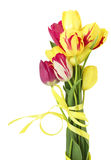 Bouquet des tulipes Photo stock