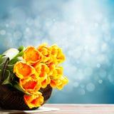 Bouquet des tulipes Images stock