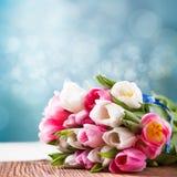 Bouquet des tulipes avec le fond de bokeh Photographie stock libre de droits