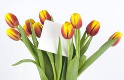 Bouquet des tulipes avec une carte Images stock