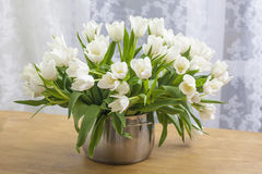 Bouquet des tulipes blanches Photos stock