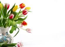 Bouquet des tulipes fraîches Image libre de droits
