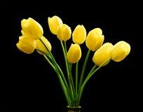 Bouquet des tulipes jaunes photo libre de droits