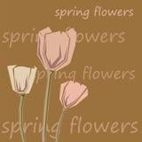 Bouquet des tulipes roses illustration de vecteur