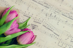 Bouquet des tulipes roses avec les notes musicales Photo stock