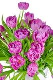 Bouquet des tulipes roses dans le pot de fleurs d'isolement sur le blanc Image stock