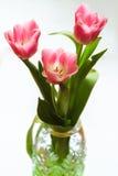 Bouquet des tulipes roses dans le vase en cristal facetté Image libre de droits
