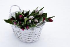 Bouquet des tulipes roses dans un pot en osier Photographie stock libre de droits