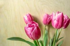 Bouquet des tulipes roses dessus du contreplaqué léger Photos libres de droits