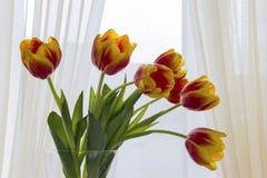 Bouquet des tulipes rouges et jaunes dans un vase contre une fenêtre, éclairage de jour naturel, contre-jour Photo stock