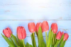 Bouquet des tulipes sur la table en bois bleue Jour heureux du ` s de femmes 8 mars , Jour du ` s de mère L'espace plat de config Photos stock