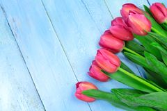 Bouquet des tulipes sur la table en bois bleue Jour heureux du ` s de femmes 8 mars , Jour du ` s de mère L'espace plat de config Images libres de droits