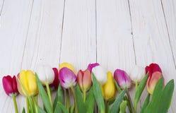 Bouquet des tulipes sur le panneau en bois rustique, décoration de Pâques Photos libres de droits