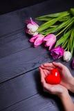 Bouquet des tulipes tendres et des mains roses tenant le coeur rouge sur le bla Photographie stock