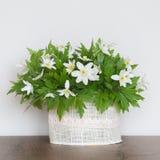 Bouquet des Wildflowers de ressort photographie stock