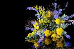 Bouquet des wildflowers frais sur le fond noir Photos libres de droits
