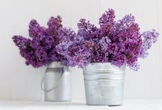 Bouquet deux des fleurs lilas Photos stock