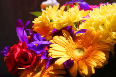 Bouquet of different flowers Royalty Free Stock Images