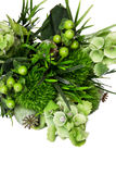 Bouquet from different white seasonal flower and green. On white background Royalty Free Stock Photo
