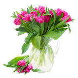 Bouquet of double pink tulips in vase stock image