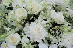 Bouquet doux de fleurs blanches pour le fond Photo libre de droits