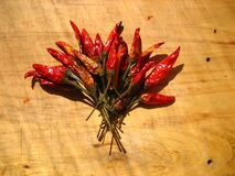 Bouquet of Dried Chili Peppers Stock Images
