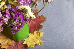A bouquet of dried flowers in a green vase stands on fallen autumn leaves of different colors. All this on a cloth gray background Stock Images