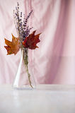 Bouquet of dried flowers and maple leaves in flask Stock Photo