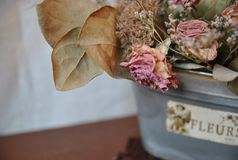 Bouquet of dried flowers Royalty Free Stock Image
