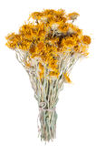 Bouquet of dried flowers yarrow on white background. The  is known as an herb widely used with curative intent. Stock Photography