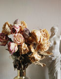 Bouquet of dried roses Stock Image