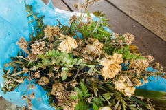 Bouquet of dried roses Royalty Free Stock Images