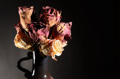 Bouquet of dried roses in ceramic vase Stock Image