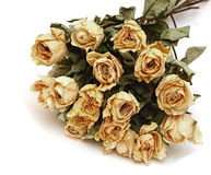 Bouquet of dried roses flowers Royalty Free Stock Photo