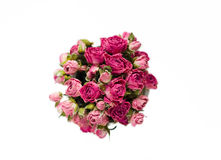 Bouquet of dried roses top view Stock Image