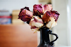 Bouquet of dried roses in vase Stock Image