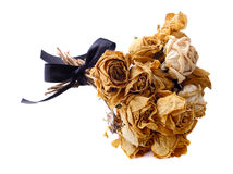 A bouquet of dried roses on  white background. Stock Image