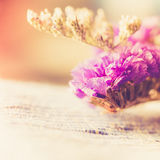 Bouquet of dried wild purple flowers on table background Stock Photography