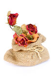 Bouquet of dried withered roses in sackcloth bag on white. Royalty Free Stock Photo