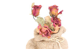 Bouquet of dried withered roses in sackcloth bag on white. Stock Photo